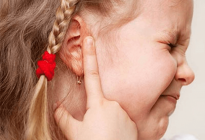 ear pick (2)